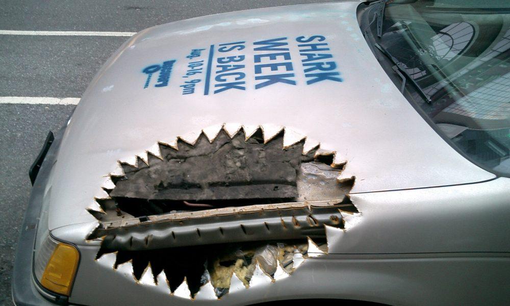 shark-week